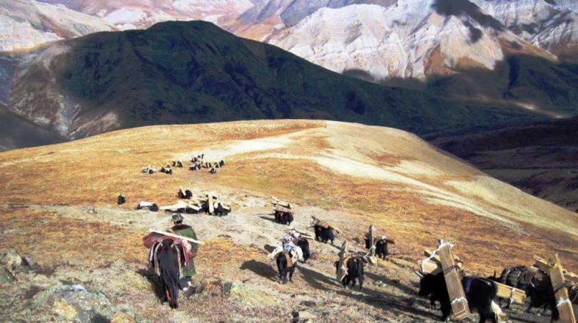 Barren Landscapes and Dolpo Caravan