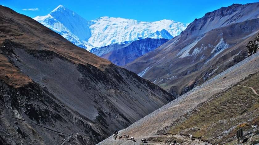 Enjoy the barren beauty of landscapes (On the way to Thorang La Pass)