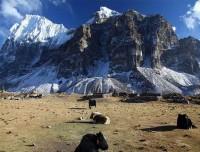 Kanchenjunga Circuit Trekking