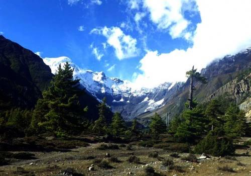 Walk through diverse landscapes amid beautiful Annapurnas